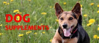 Dog Joint & Nutrition Supplements
